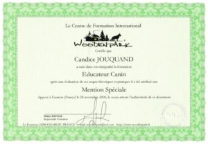 Educagil - Diplôme éducateur canin - animaux