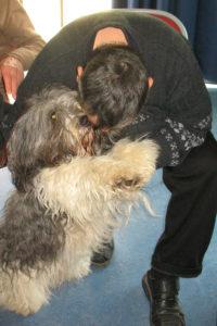Zoothérapie chien - éducagil