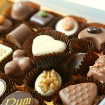 Chocolat, attention danger pour nos chiens!