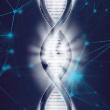 Les tests génomiques en élevage canin